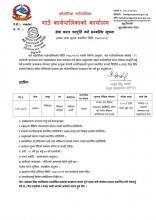job vacancy MBBS